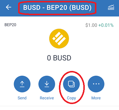 copy the busd bep20 (bsc) address of the destination wallet