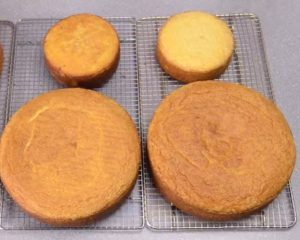 Baked cake just removed from oven